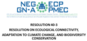 Ecological Connectivity